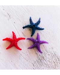 Stelle marine piccole