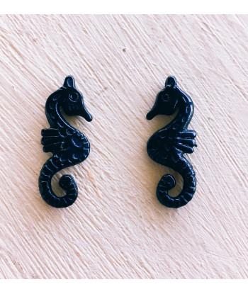 Cavallucio marino  piccolo